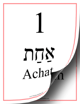 All Hebrew Numbers Feminine Teachers Printable