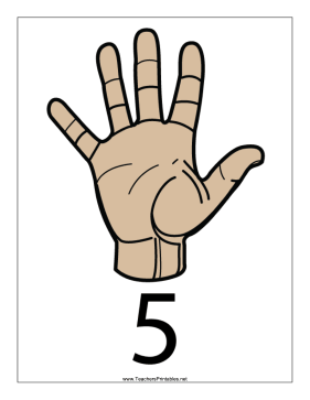 Number 5-Filled-With Label Teachers Printable