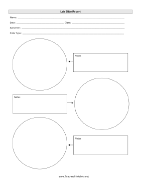 Microscope Lab Slide Report Teachers Printable